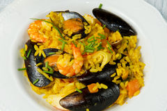 Fish paella Stock Images