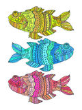 Fish painted by hand. Vector illustration. Graphic arts Stock Images