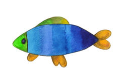 Fish painted with a watercolor. And colored penсils Royalty Free Stock Photography