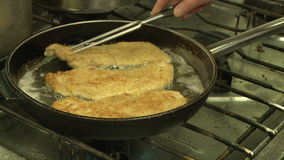 Fish In Pan stock video