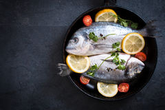 Fish in the pan Stock Image