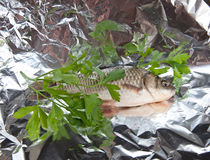 Fish and parsley in foil Stock Images