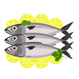Fish with parsley and lemon. Stock Photos