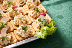 Fish pasta tarts with radish Royalty Free Stock Photos