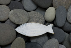 Fish on pebble Royalty Free Stock Image