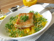 Fish with pepper and cress Royalty Free Stock Photos