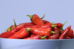 Fish Peppers Royalty Free Stock Images