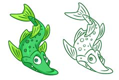 Fish pike cartoon Illustrations. Isolated image animal character Stock Photo