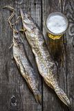 Fish pike: dried, dried with a glass of beer Royalty Free Stock Image