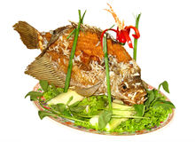 Fish Plate Stock Images