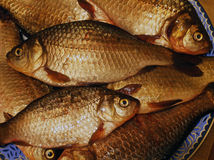 Fish on a plate. Fresh crucian fish on a plate Royalty Free Stock Images