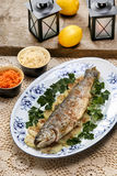 Fish plate in greek tavern. Roasted trout Stock Images