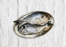Fish on a plate at home kitchen Royalty Free Stock Photo