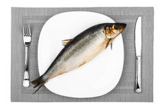 Fish On A Plate Stock Photos