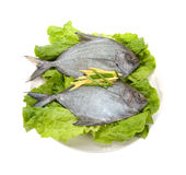 Fish in the plate Royalty Free Stock Photos
