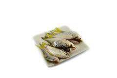 Fish on plate Stock Photos