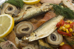 Fish plate with smoked fish Stock Images