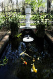 Fish pond. Ornate garden pond with big tropical fish royalty free stock image