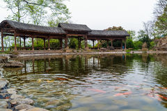 Fish pond in front of promenade Chinese rest  ornamental . Stock Image