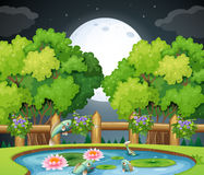Fish in the pond at nighttime. Illustration Stock Image