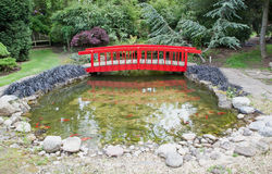 Fish Pond Royalty Free Stock Photography