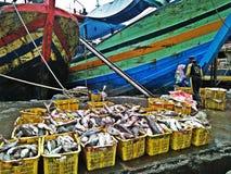 Fish port Stock Photography