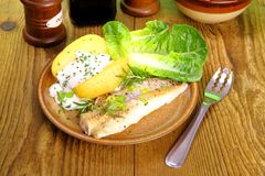 Fish, potato with cottage cheese, salad and fork Stock Images