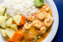 Fish in prawn sauce. Brazilian food, fish with prawn sauce, vegetables and rice Stock Image