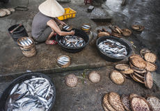 Fish preparation on Hoi An market Stock Image