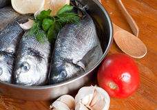 Fish prepared for the grill Royalty Free Stock Photography