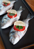 Fish prepared for the grill Stock Images
