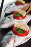 Fish prepared for the grill Royalty Free Stock Photos