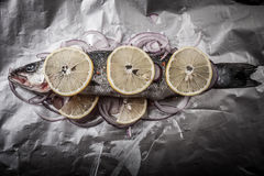 Fish prepared for roasting on the foil with lemon and onion Royalty Free Stock Photo