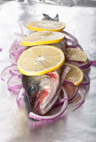 Fish prepared for roasting on the foil with lemon and onion Royalty Free Stock Images