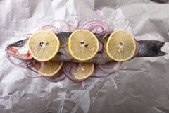 Fish prepared for roasting on the foil with lemon and onion Stock Images