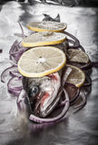 Fish prepared for roasting on the foil with lemon and onion. tinted Royalty Free Stock Images