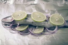 Fish prepared for roasting on the foil with lemon and onion. tinted Royalty Free Stock Image