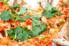 Fish prepared at Thai. Prepared fish with red peppers and some coriander leaves Royalty Free Stock Image