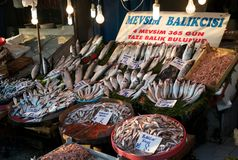 Fish presented for Sale at the Market in Istanbul stock photography