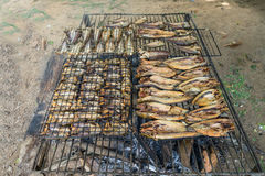 Fish preservation of countryside in thailand by fire and smoke Royalty Free Stock Images