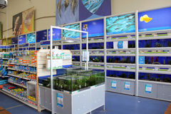 Fish products and aquariums. London, England – Circa July 2014: Tropical and cold water fish and products for sale in a pet supermarket in England stock photography