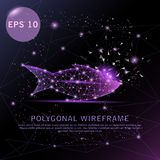 Fish purple background futuristic wire frame. royalty free illustration