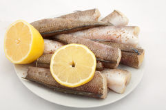 Fish ready for cooking with spices �nd lemon Royalty Free Stock Images