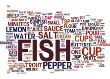 Fish Recipes Word Cloud Concept. Fish Recipes Text Background Word Cloud Concept Stock Photos