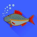 Fish With Red Fins Stock Photo