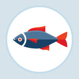 Fish with red fins - vector logo template concept illustration in flat style design Royalty Free Stock Photography