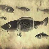 Fish - retro style Stock Image