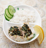 Fish with rice Royalty Free Stock Photos