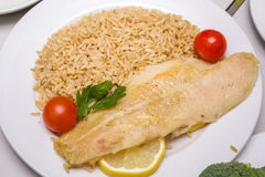 Fish with rice Royalty Free Stock Photo