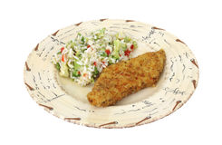 Fish and rice on plate Stock Image